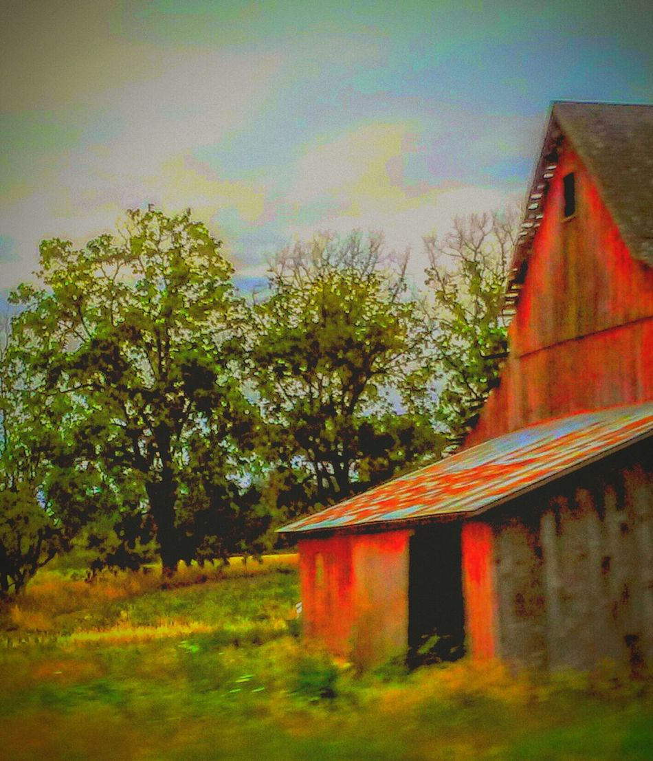 Taking Photos Color Portrait Farm Life Barnstalker On The Road Architecture_collection Getty Images Fine Art Photography On My Way Beautiful Nature Barnhouse Barnology EyeEm Gallery In The Country Oregonexplored Overgrown And Beautiful Beauty Overgrown Old Barns Drive By Photography 43 Golden Moments If These Walls Could Talk Love Of Photography The OO Mission The Journey Is The Destination