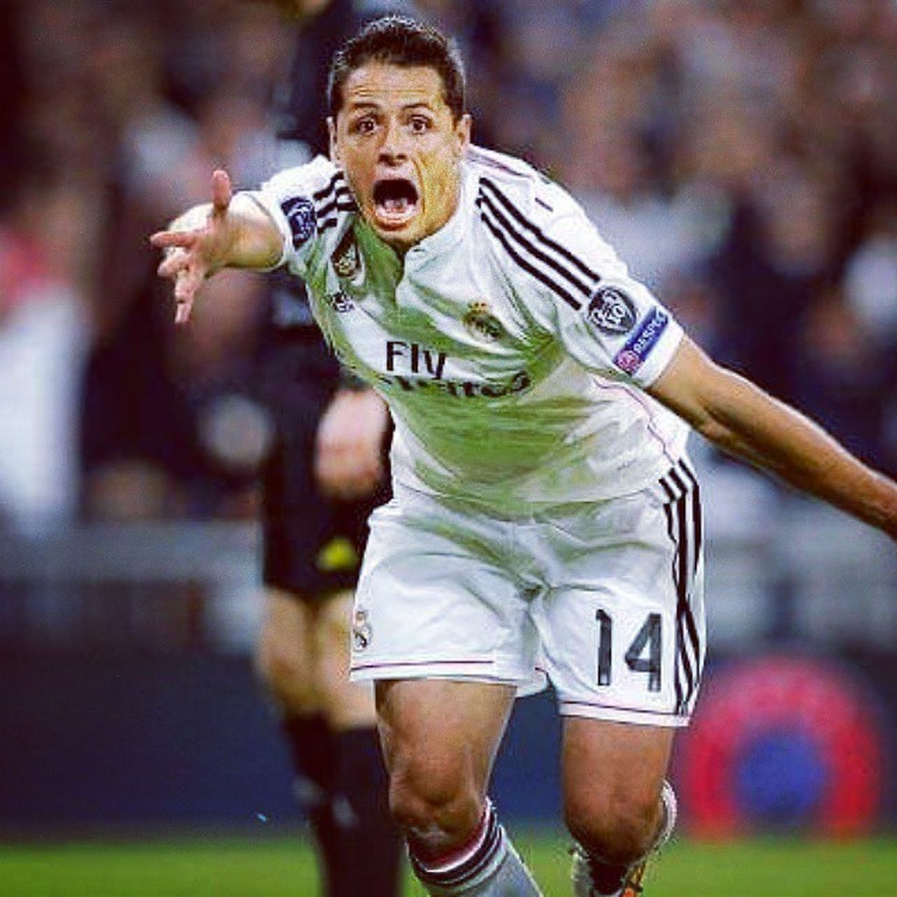 Halamadrid Chicharito Realmadrid Madridista Real Madrid Champions Championsleague