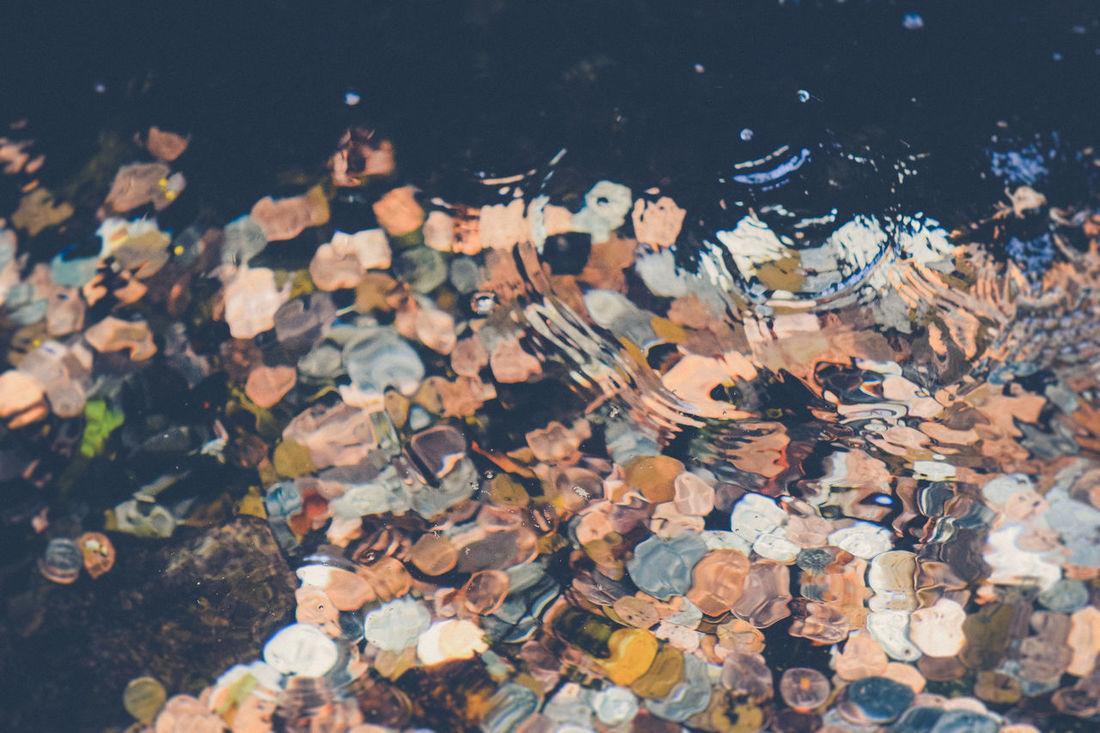 Abundance Change Coins Macro Make A Wish Money Rippled Water Water Water Fountain Water Rings What Lies Beneath Wishes Wishing Wishing Well