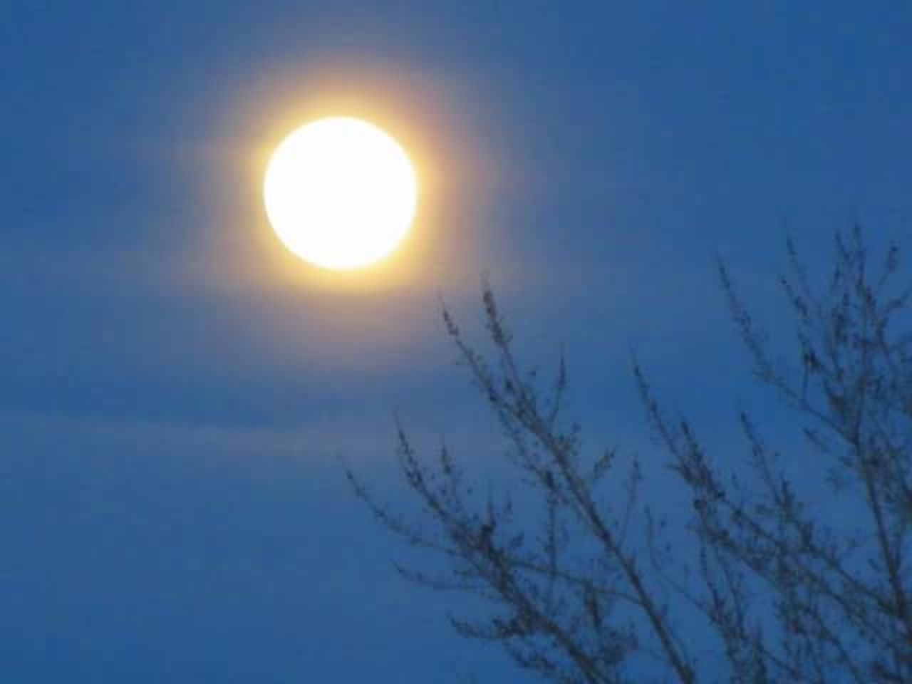Moon Moonlight Moon Rising Moonporn Moon Shots TreePorn Night Sky Outdoors Bare Tree Beauty In Nature Full Moon No Filter, No Edit, Just Photography Wolf Moon Full Moon Moon Moonrise Full Moon 🌕 Full Moon Risen'... Full Moon Collection MoonScape Moon Porn Winter Snow Cold Temperature