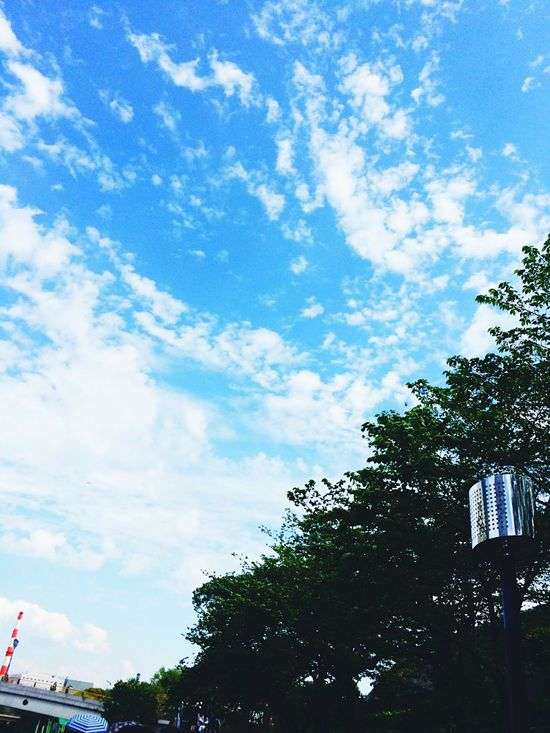 Osaka,Japan 大阪 青空 푸른 하늘 Blue Sky 晴れ Sunny Sunny Day 맑음 화창한 날