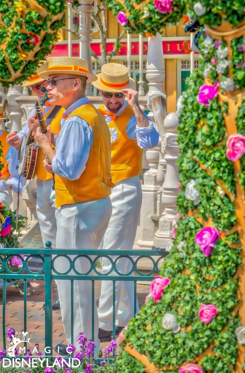 Flower Disneyland Large Group Of People Traditional Clothing Disneyland Resort Paris Disneyland Paris Amusement Park Disneylandparis Celebration Disney Multi Colored Travel Destinations