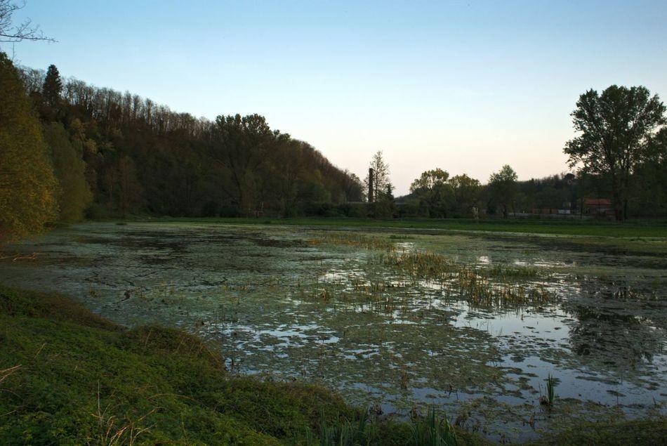 Italy Nature River Landscape_Collection Shootermag Landscape Taking Photos EyeEm Nature Lover EyeEm Landscape