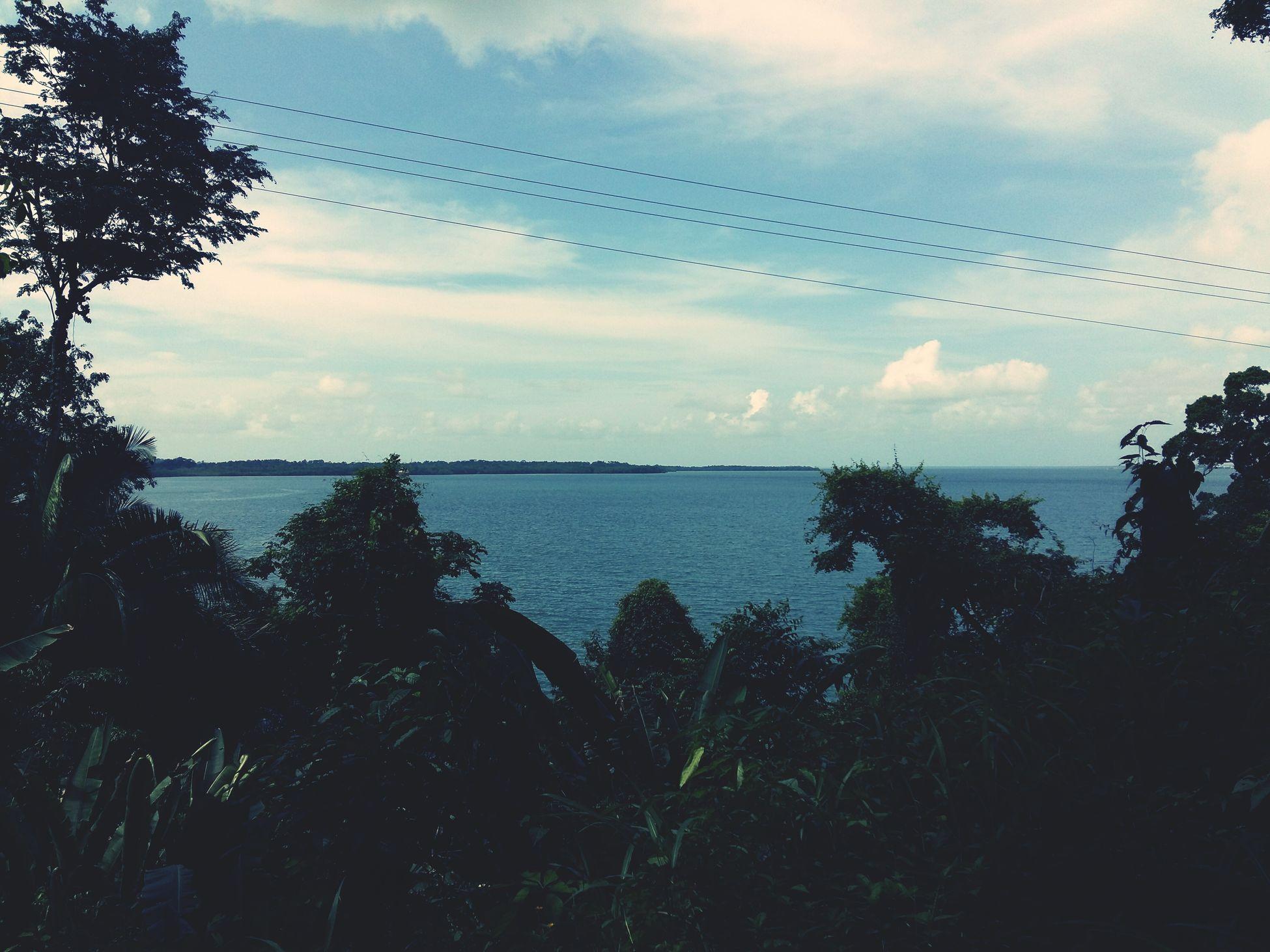 Collected Community Paseo Por una bella playa de Mi puerto 😎