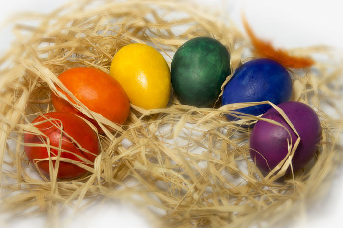 Animal Egg Animal Nest Celebration Celebration Event Cultures Easter Easter Egg Easter Egg Hunt Egg Egg Arts Eggs Food Food And Drink Holiday - Event Indoors  Multi Colored No People Rainbow🌈 Reinbow Reinbow Colors Tradition