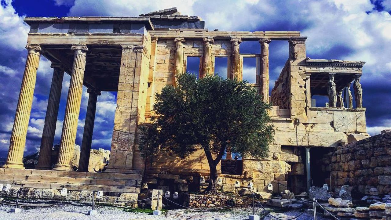 Architecture Outdoors Sky No People Parthenon Parthenon Acropolis Greece Acropolis, Athens Greece Olive Tree Olive Trees Culture Greek Holidays Sun Landscape Scenics Built Structure Building Exterior Day Tree Architectural Column Low Angle View EyeEmNewHere