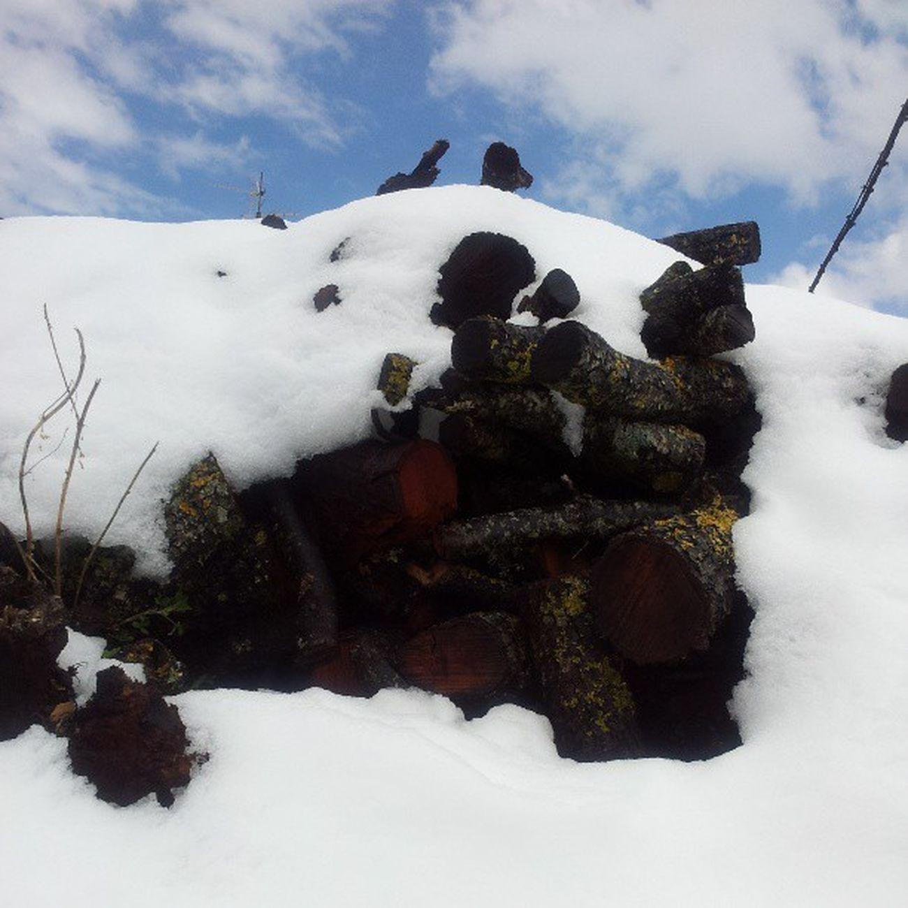 Leña nevada
