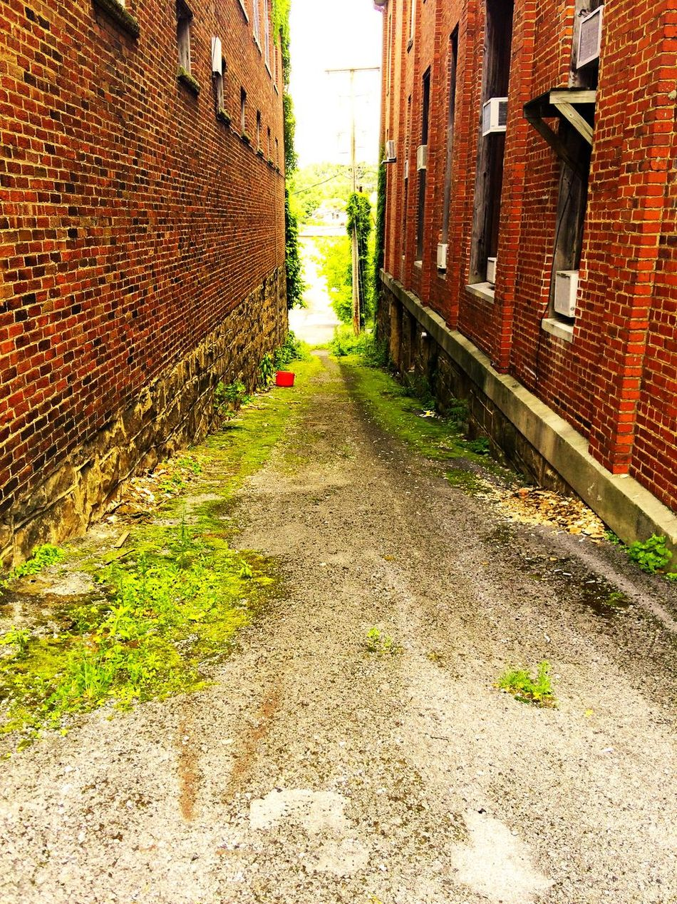 Alley Architecture Brick Wall Building Building Exterior Built Structure City Day Diminishing Perspective Empty Growth Long Narrow No People Outdoors Plant Residential Building Residential Structure The Way Forward Vanishing Point Walkway