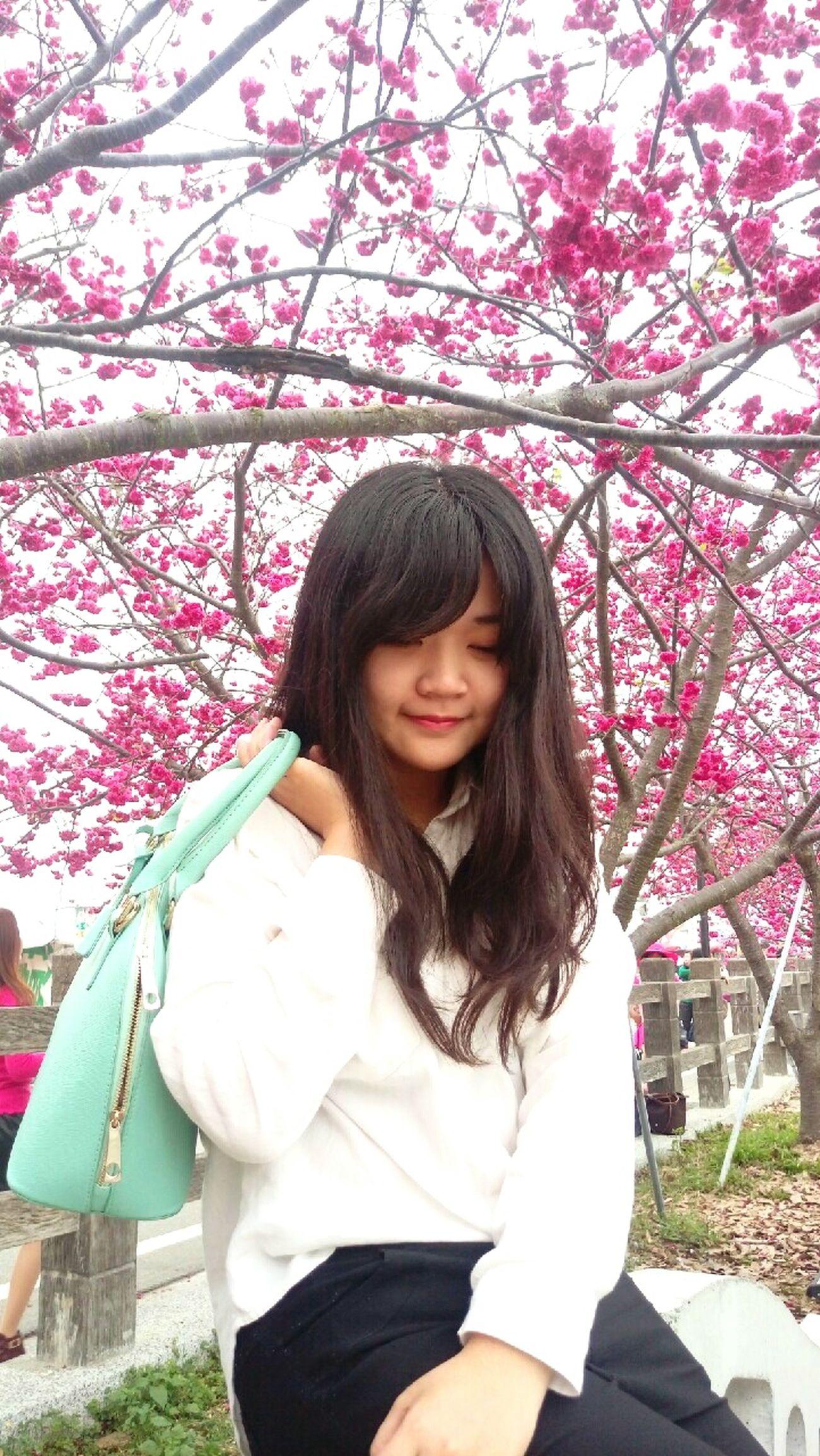 Sakura🌸桜🌸 First Eyeem Photo