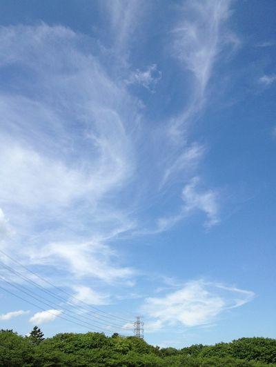 Sky Clouds And Sky Skyporn EyeEm Nature Lover