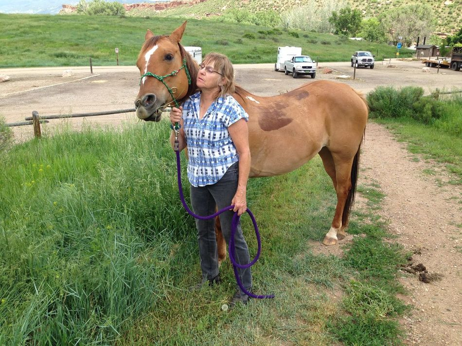 Horse Speak Brown Casual Clothing Colorado Colors Day Domestic Animals Field Full Length Grass Grassy Green Color Horses Landscape Leisure Activity Lifestyles Mammal Nature Outdoors Portrait Rural Scene Taking Photos Trail Rides