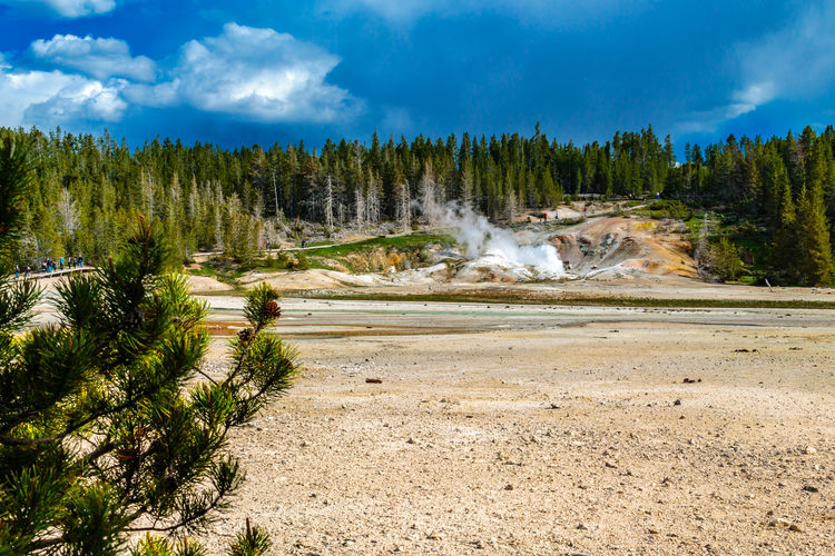 Beauty In Nature Black Growler Steam Vent Cloud - Sky Copy Space Geothermal Activity Ledge Geyser Nature Non-urban Scene Norris Geyser Basin Outdoors Porcelain Basin Summer Travel Destinations Wyoming Yellowstone National Park