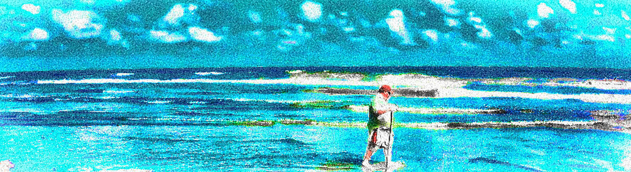 Barefoot Beach Beautiful Nature First Time Seeing Gulf Of Mexico Gulf Of Mexico Ocean Sandy Texas Walking Stick