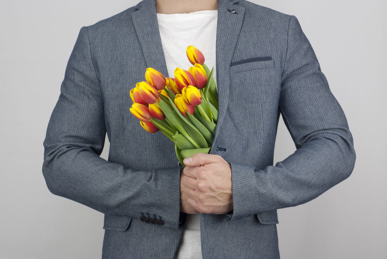 Beautiful stock photos of tulip, Cut Out, Flower, Formalwear, Freshness