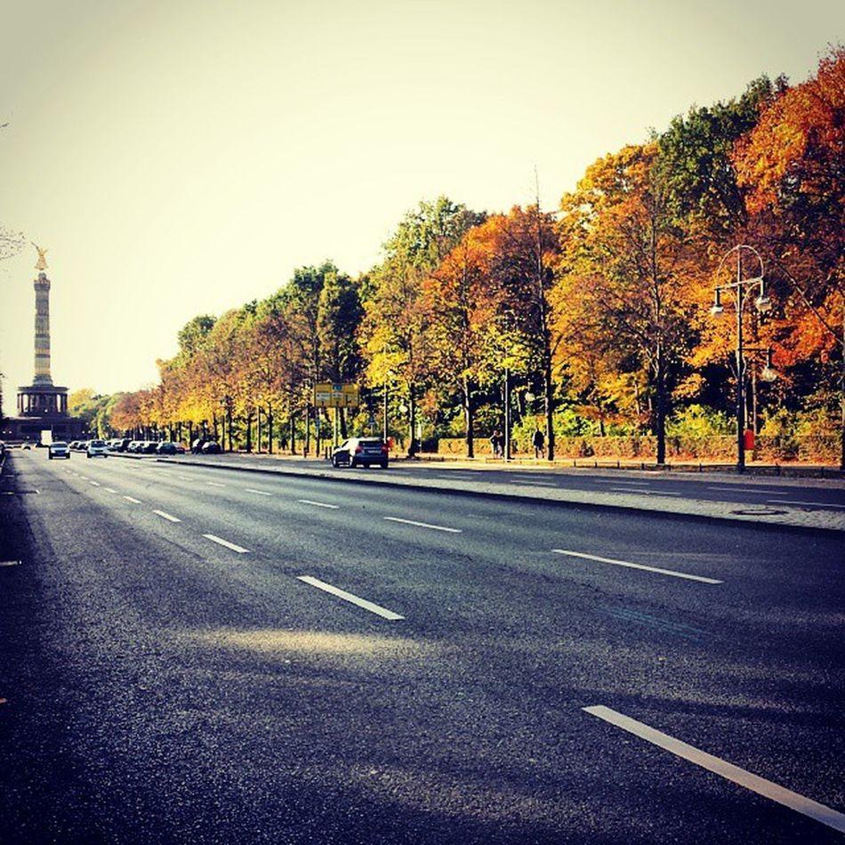 Herbstgold Berlin Siegess äule Goldelse