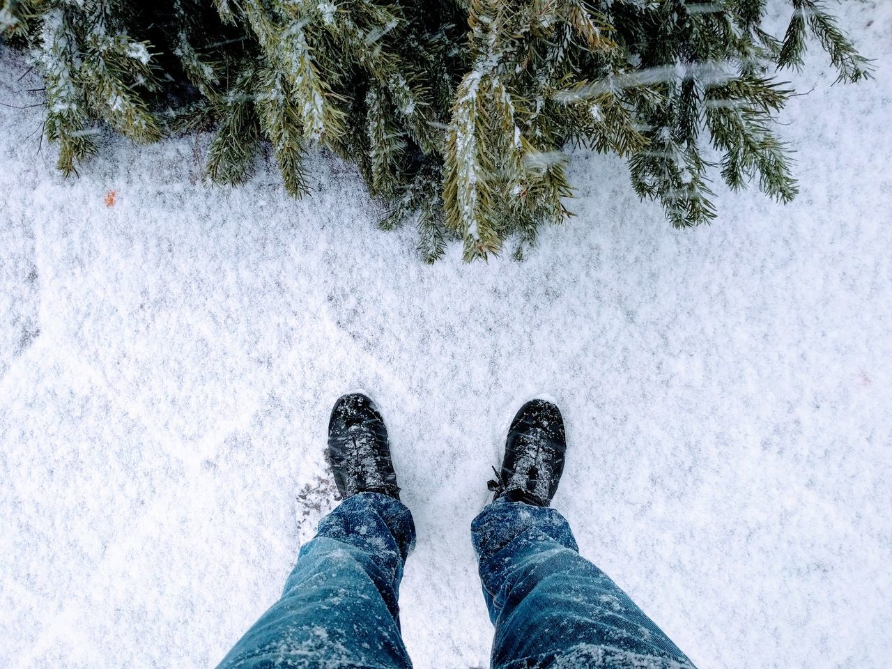 Human Leg Low Section Human Body Part Standing One Person Personal Perspective Real People Shoe Day Outdoors Close-up People Adults Only Adult Winter Wonderland Wintertime Winter Trees Winter Xmas Tree Berliner Ansichten Berlin Snow Snow ❄ Snowing First Snow Fresh On Market 2017