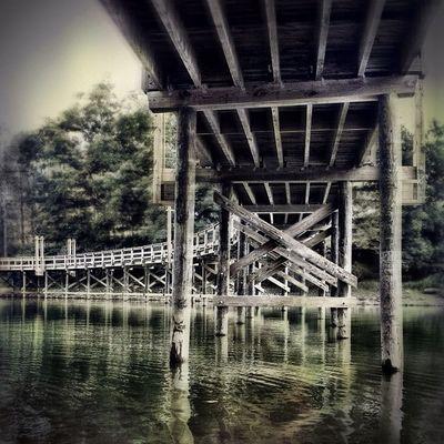 Under the boardwalk. #walk #bridge #boardwalk #iris #wva #westvirginia #lake #structure #architecture #mobilephotography #igersphilly #iphoneonly #iphonesia #instagood #canvaspop #instamood #instadailyy #webstagram #picoftheday #photooftheday #igad Jj  Instagood Architecture Statigram Walk Instagramhub Structure Webstagram Bridge 20likes Lake Jj_forum Iphoneonly Igaddict Photooftheday Canvaspop Iphonesia Igersphilly Iris Mnolt Picoftheday Instadailyy Boardwalk Westvirginia Mobilephotography Wva Instamood Igers
