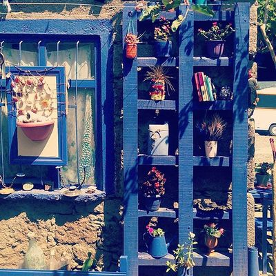 GardenOfEden Bluish Instalove