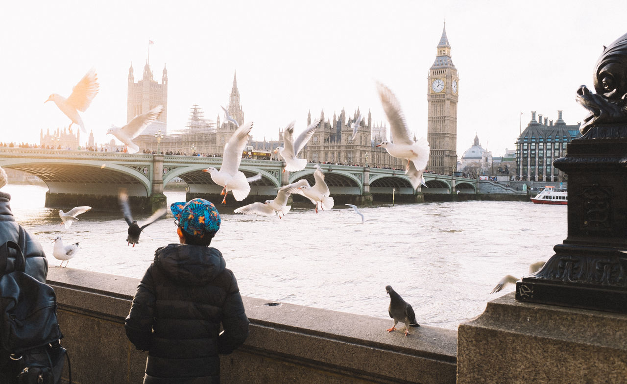 If I could fly ... Animal Themes Animals In The Wild Big Ben Bird Birds Birds_collection Culture Fountain Full Length Historic International Landmark Leisure Activity Lifestyles Motion Outdoors Real People Religion River Thames Riverside Seagulls Showcase: January Side View Statue Thames Water