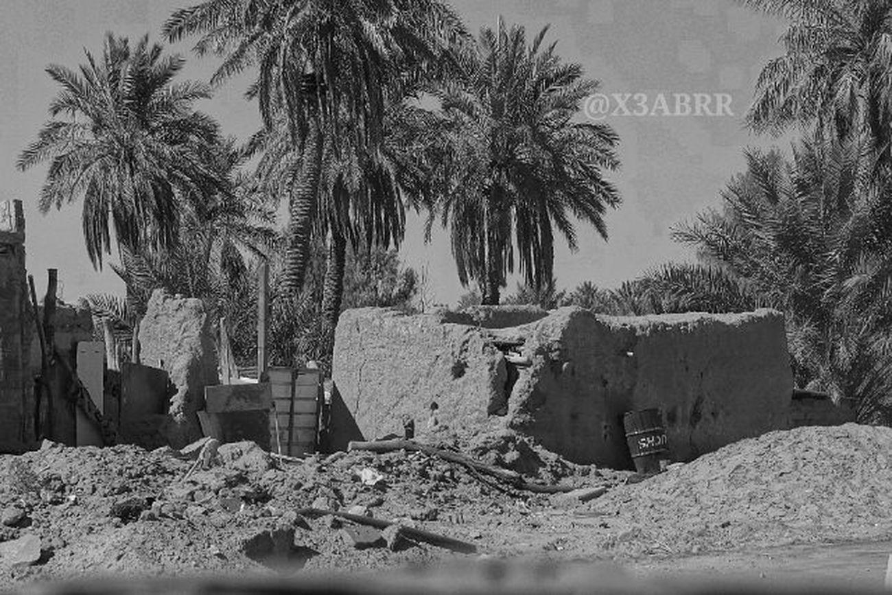 خرابه قديم تمثال تصميم منظر الربيعية ابيض_اسود تراث التراث نخل Palm Heritage 😚 Old HDR Colorful Blackandwhite Nature Landscape القصيم مساء_الخير Goodevining Saudiarabiatag @saudi.arabia