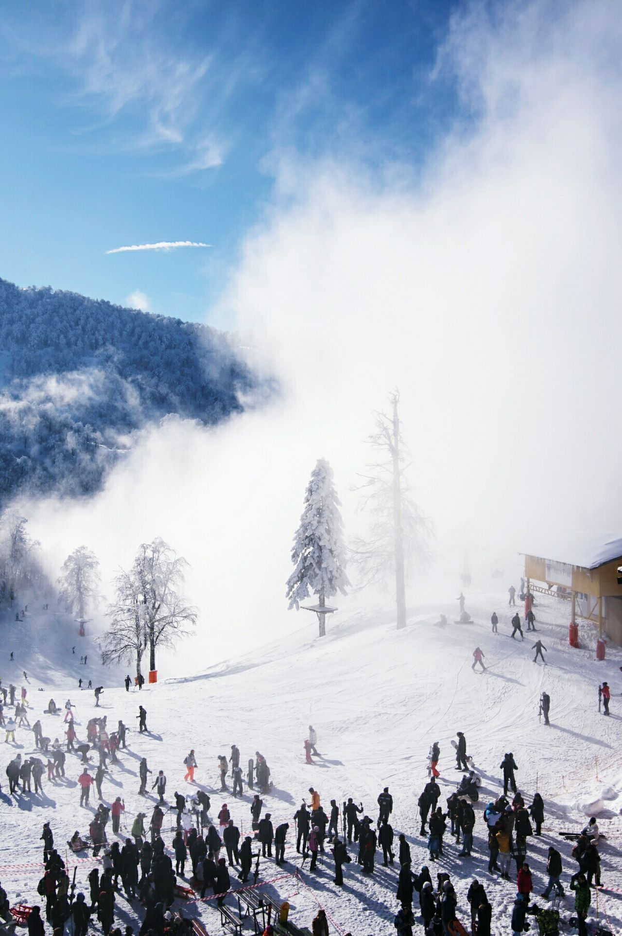 Large Group Of People Winter Adventure Club Snow Sports Snowing Sky Outdoors People Nature Snow Tree Check This Out People Watching Snowboarding Peopleandplaces Its Cold Outside Cold Temperature Outdoors Life Beauty In Nature Finding New Frontiers