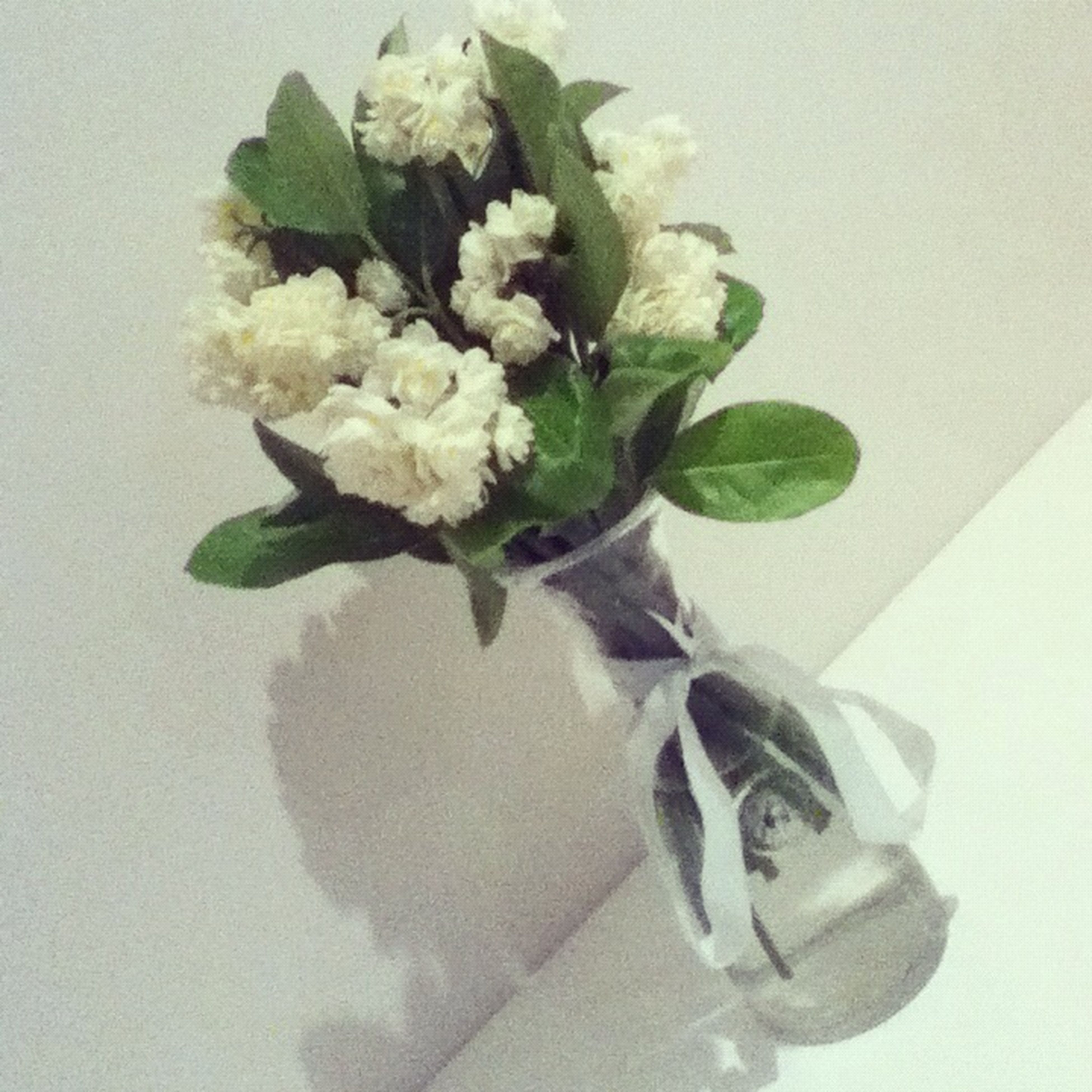 flower, indoors, freshness, leaf, fragility, vase, white color, plant, high angle view, close-up, table, petal, potted plant, growth, nature, flower head, bunch of flowers, bouquet, home interior, green color