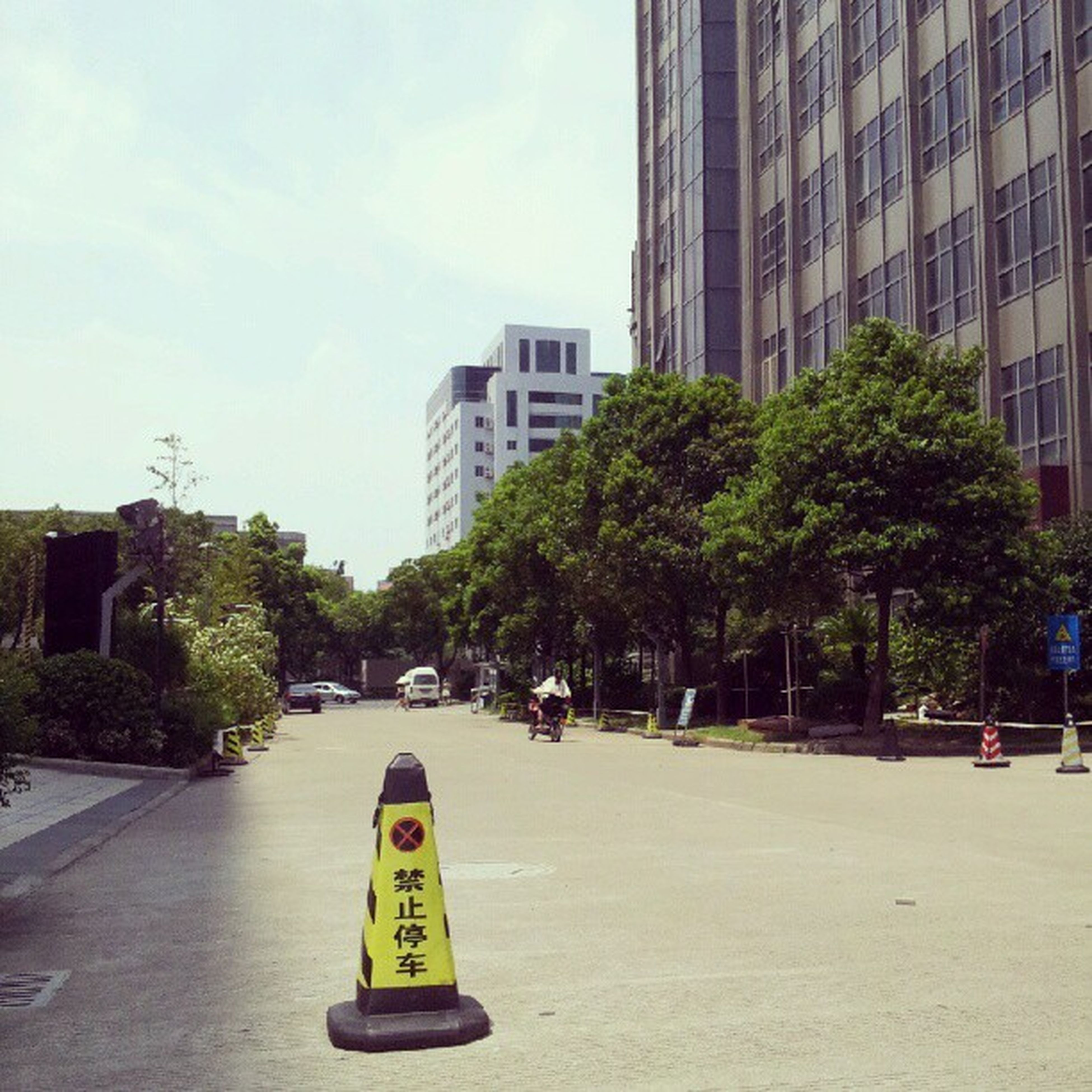 building exterior, architecture, built structure, city, tree, street, transportation, communication, office building, road, skyscraper, city life, sky, building, tower, car, text, road sign, tall - high, modern