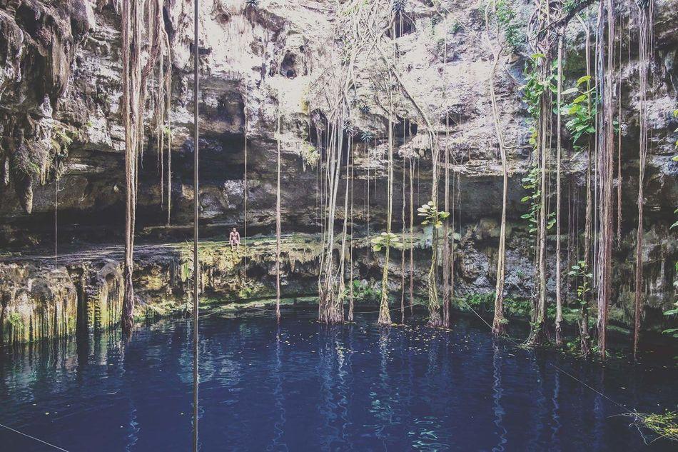 Reflection Water Beauty In Nature Yúcatan Mexico Cenotes Cenote Travel
