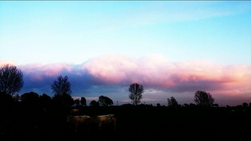 Skyporn Cloudporn Sunset EyeEm Best Shots