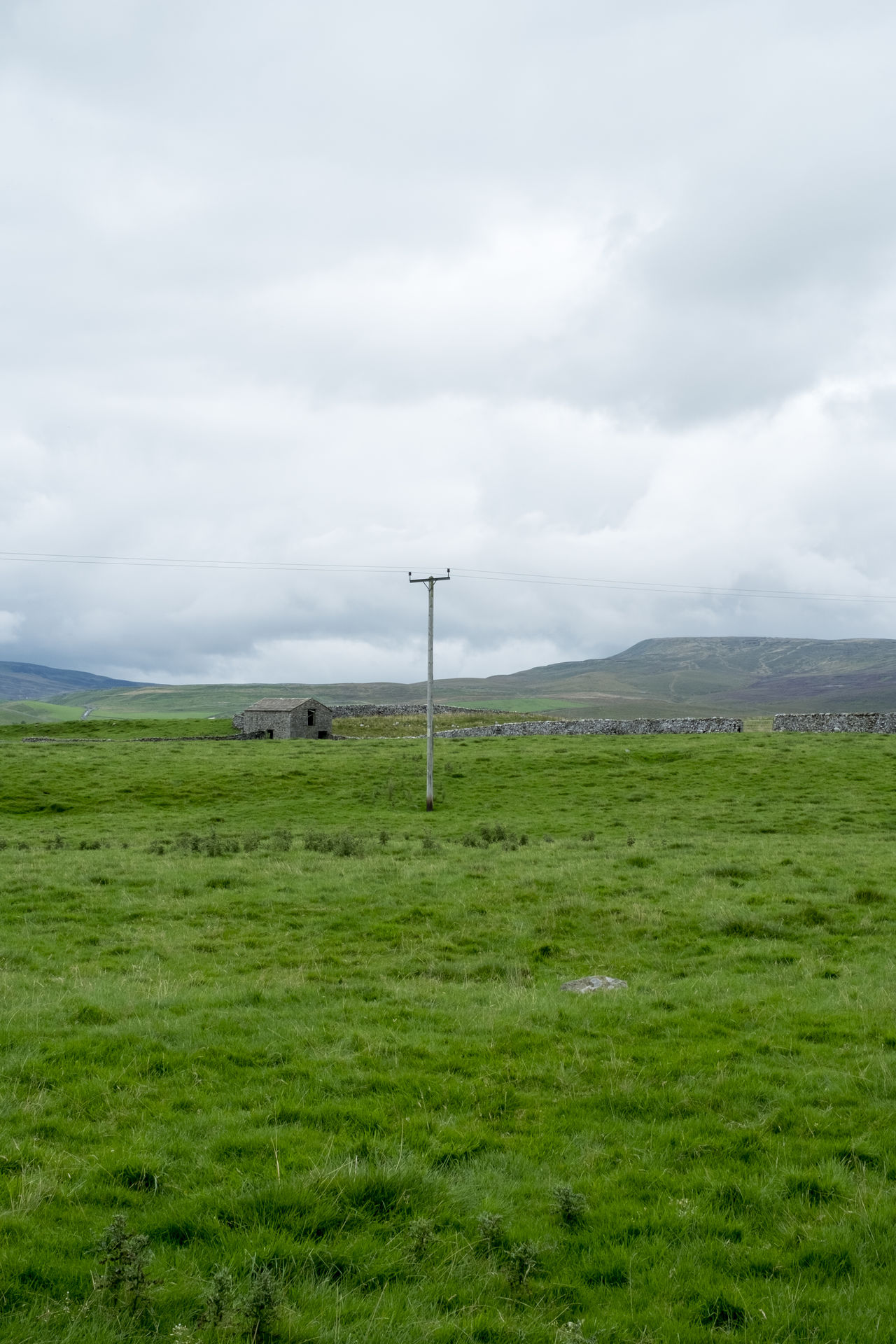 Settle, Yorkshire Dales Beauty In Nature Day Grass Hiking Landscape Meadow Nature Outdoors Scenic Scenics Tranquility Tree Trees Walking Yorkshire Yorkshire Dales Power Line  Cottage