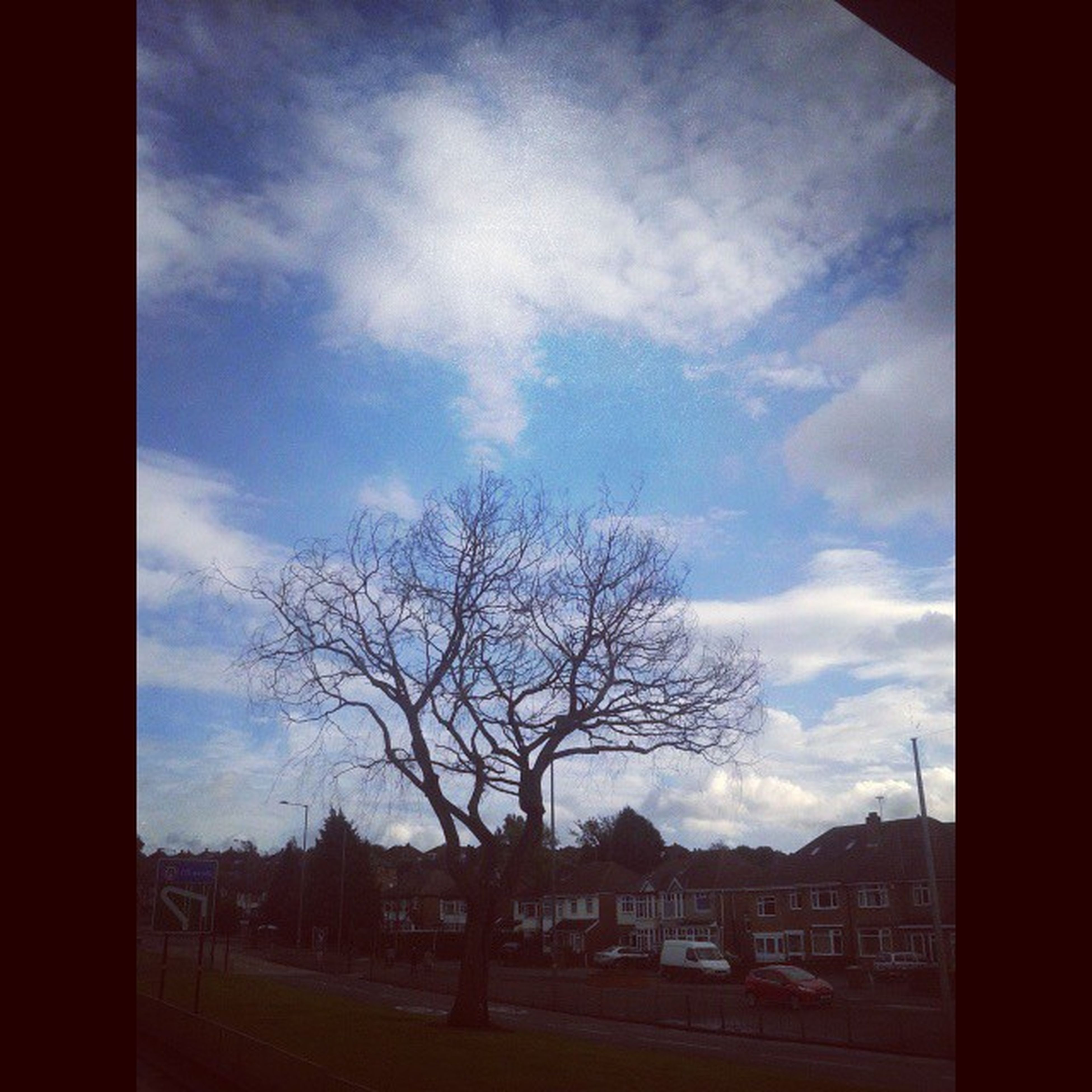 bare tree, sky, tree, cloud - sky, built structure, architecture, cloud, transfer print, building exterior, auto post production filter, silhouette, cloudy, transportation, road, nature, branch, car, day, house, landscape