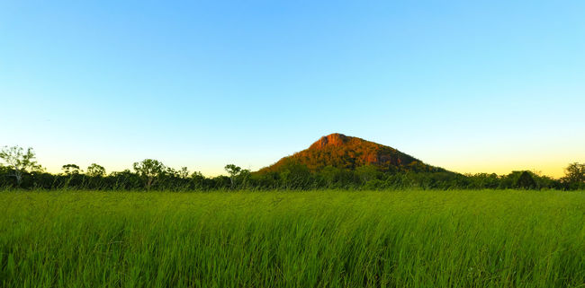 Ngungun Sunset Beauty In Nature Countryside Glasshouse Mountains Horizon Over Land Idyllic Landscape Mountain Mountain Mt Ngungun Nature Non-urban Scene Outdoors Relaxing Moments Remote Scenics Sky Solitude Sunset Tranquil Scene Tranquility