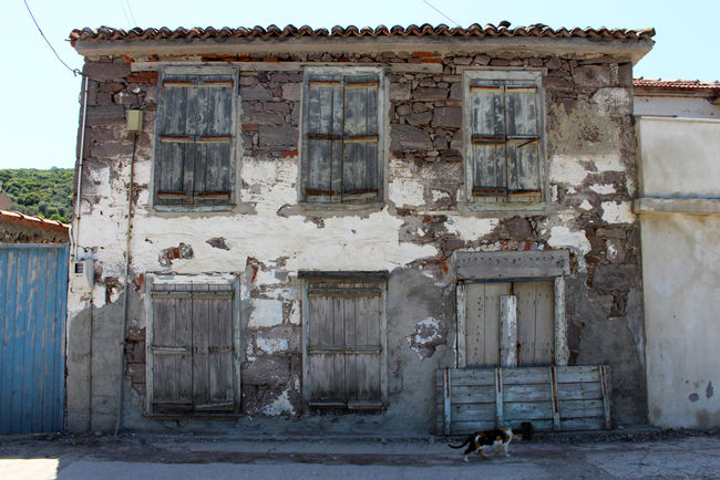 Abandoned Abandoned Buildings Abandoned House Abandoned Places Architecture Bad Condition Building Exterior Built Structure Cat Damaged Deterioration Façade Greece House Lesbos Lesvos Mediterranean  No People Old The Past Travel Travel Destinations Village Village Life Weathered