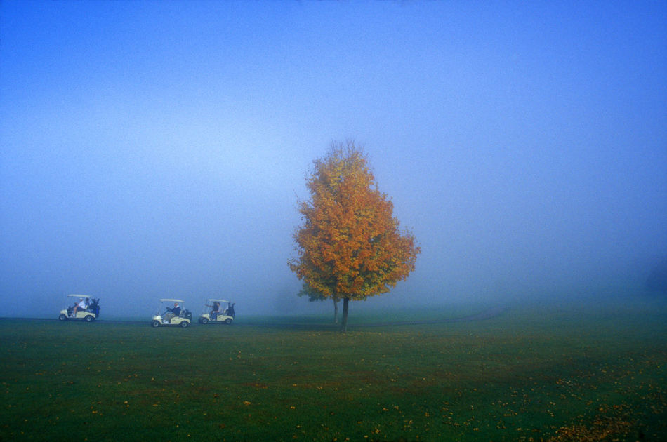 Beautiful stock photos of golf, Autumn, Day, Fog, Golf