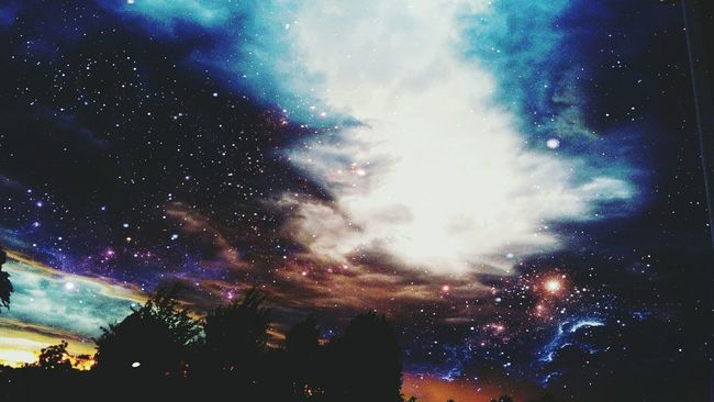 Cosmosky