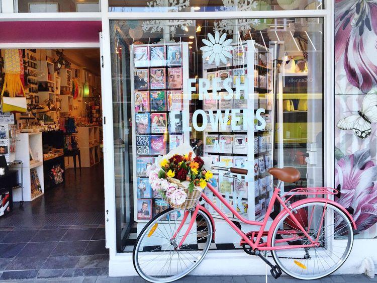 Pink Color Travel In Queenstown Wonderlust