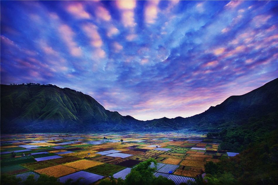 Beauty of sunrise Taking Photos Hello World Check This Out Art Gallery Week On Eyeem Lombokgallery All_shots Weekly_feature Weeklymarket Landscape_photography Landscape_Collection Lomboklandscaper Lombok Island Vscoindonesia  Photography EyeEm Best Shots - Landscape