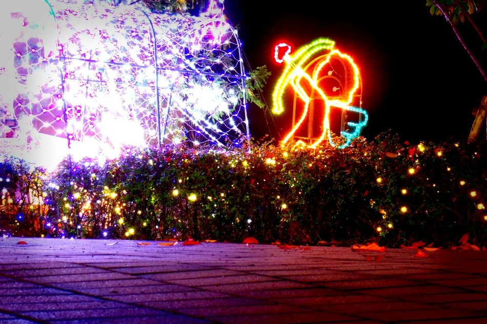 Night Lights Night Photography Relaxing Cupid Japan Photography Pentax PENTAX Q Baby Cupid