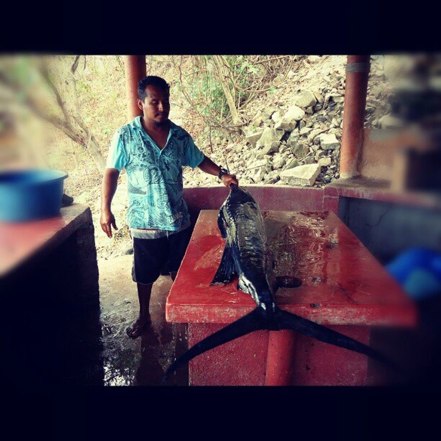 A great Fisherman A big Fish A Sailfish This is Mexico