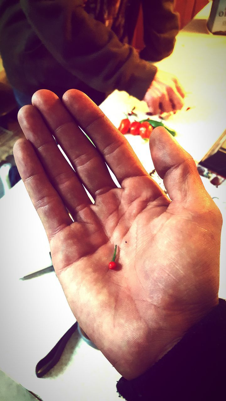 human hand, human finger, human body part, real people, one person, men, holding, close-up, indoors, leisure activity, skill, day, people