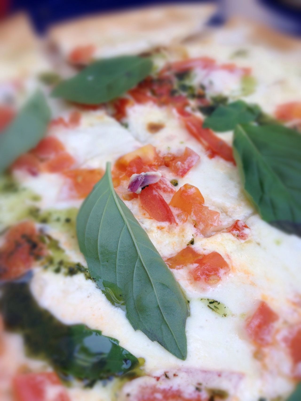 Tarte Flambee Flammkuchen Food And Drink Food Ready-to-eat Close-up Depth Of Field