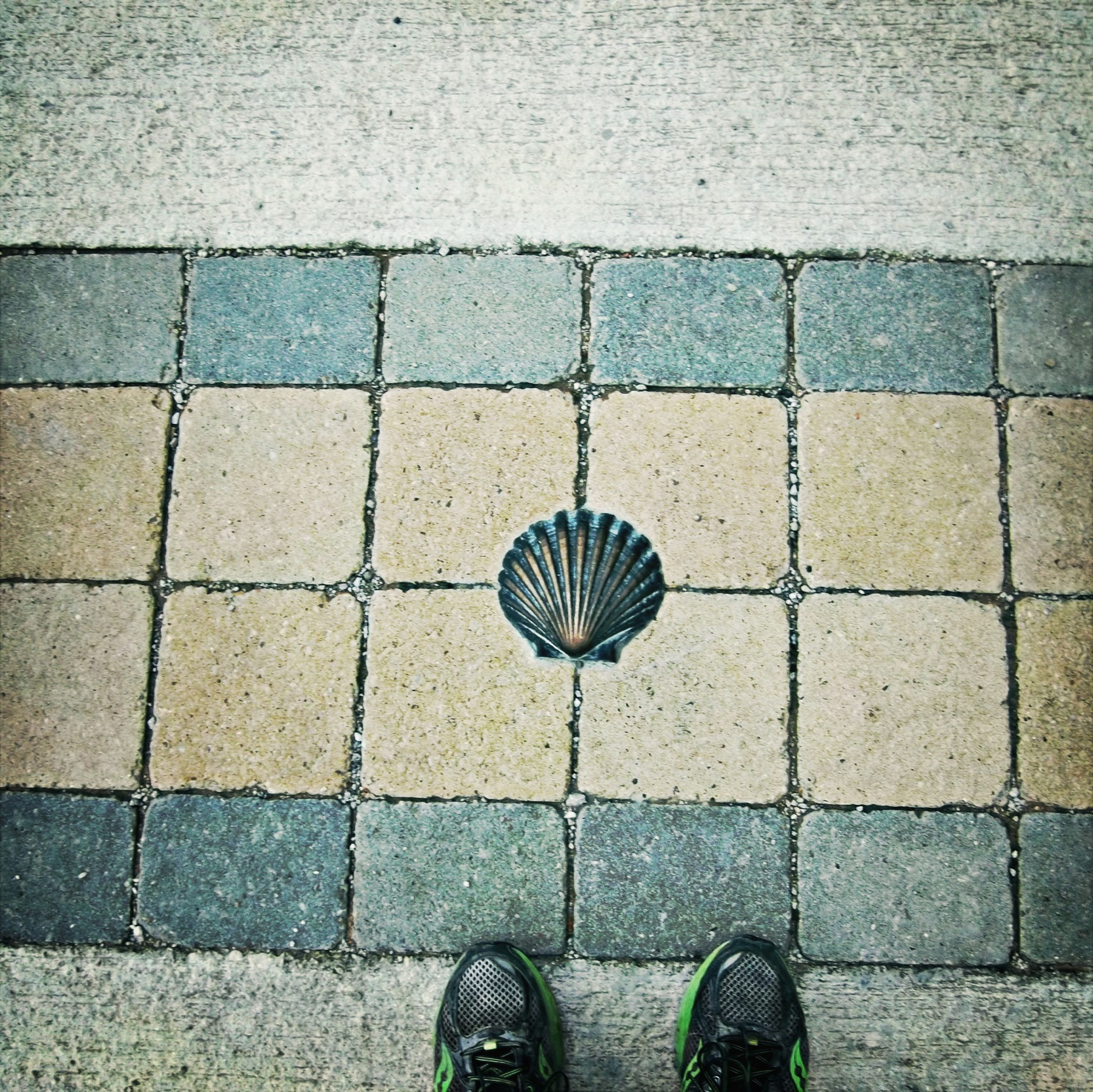 shoe, cobblestone, low section, high angle view, paving stone, street, footwear, person, personal perspective, directly above, tiled floor, footpath, pattern, pavement, one person, pair, sidewalk, standing, human foot