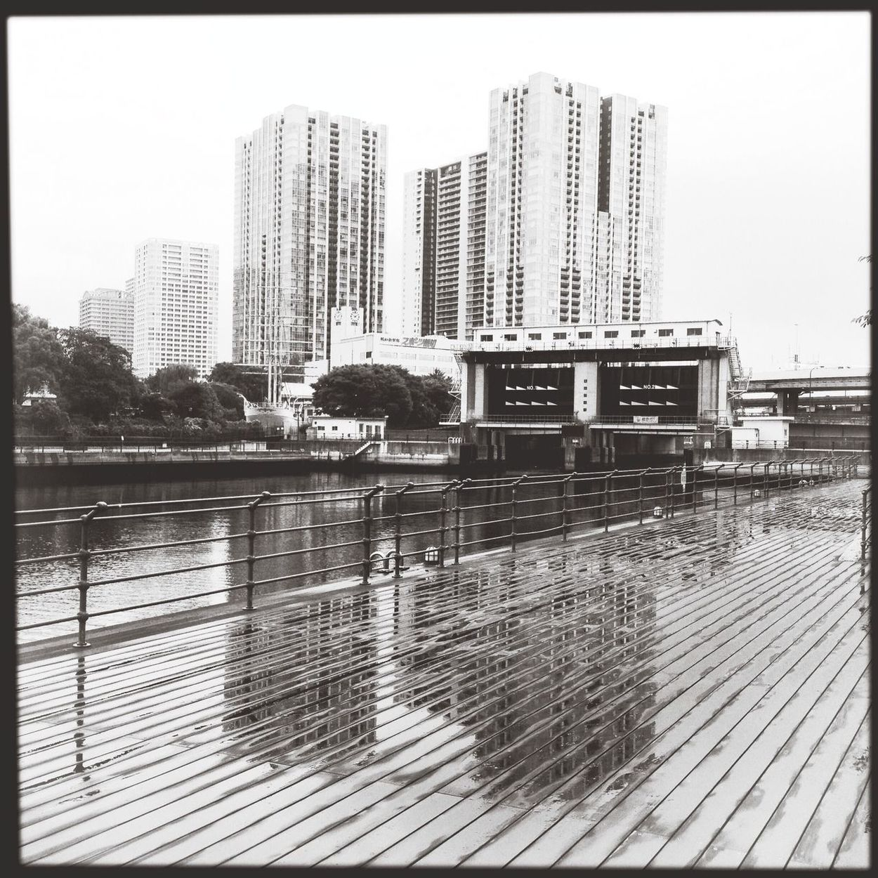 Rainy Days Wooddeck Wood Deck Canal Riverside Water Gate Black And White Monochrome Quiet Quiet Places Calm Water Front  Waterfront Refrection Boardwalk Rain Puddle  Rain Puddle Reflection Rainscapes Buildings Tokyo,Japan