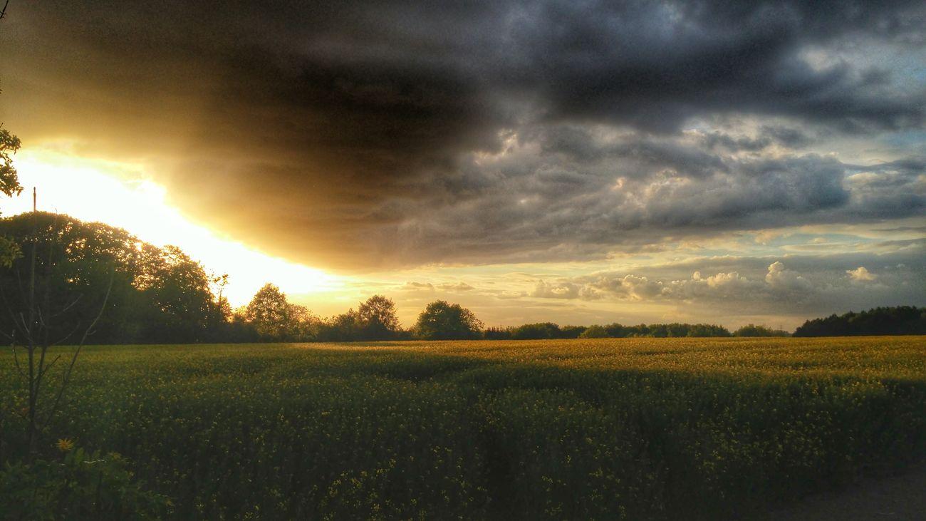 Sonnenuntergang Landschaft