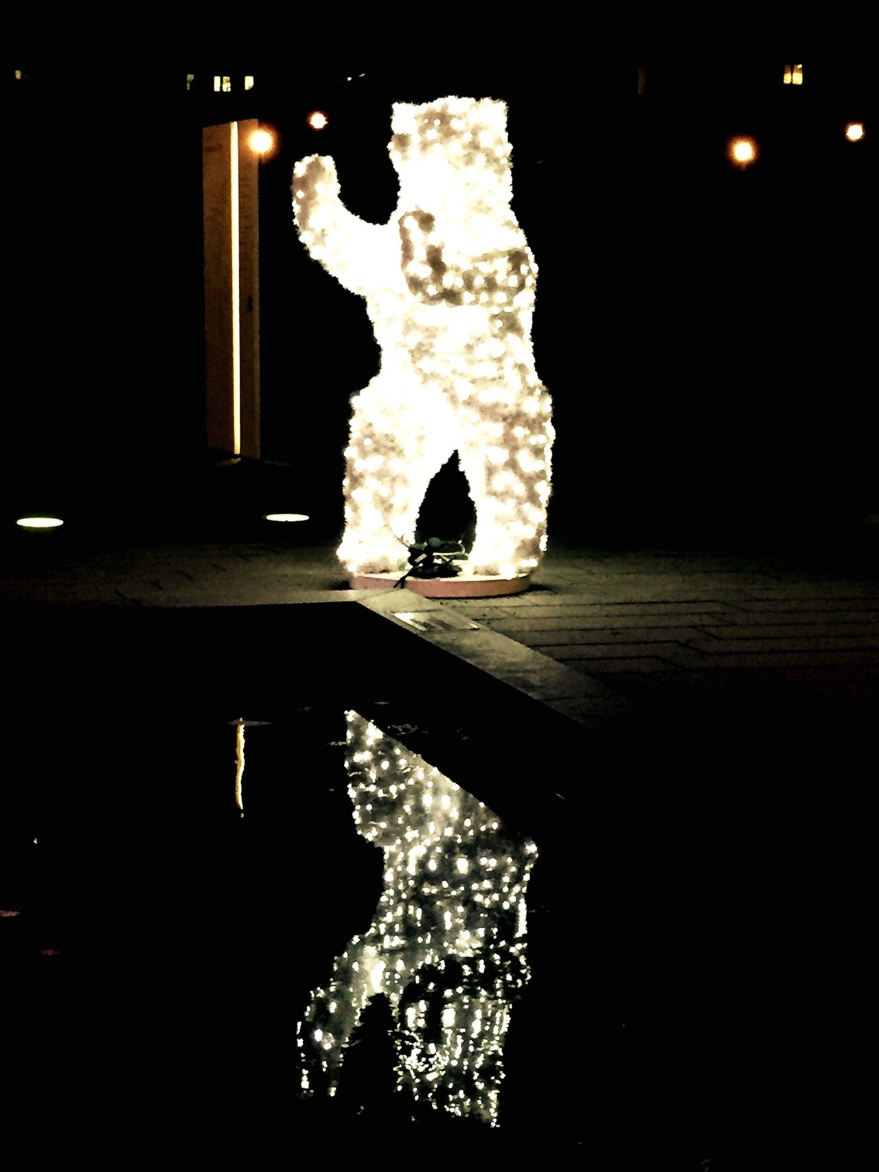 Dancing Bear Reflections