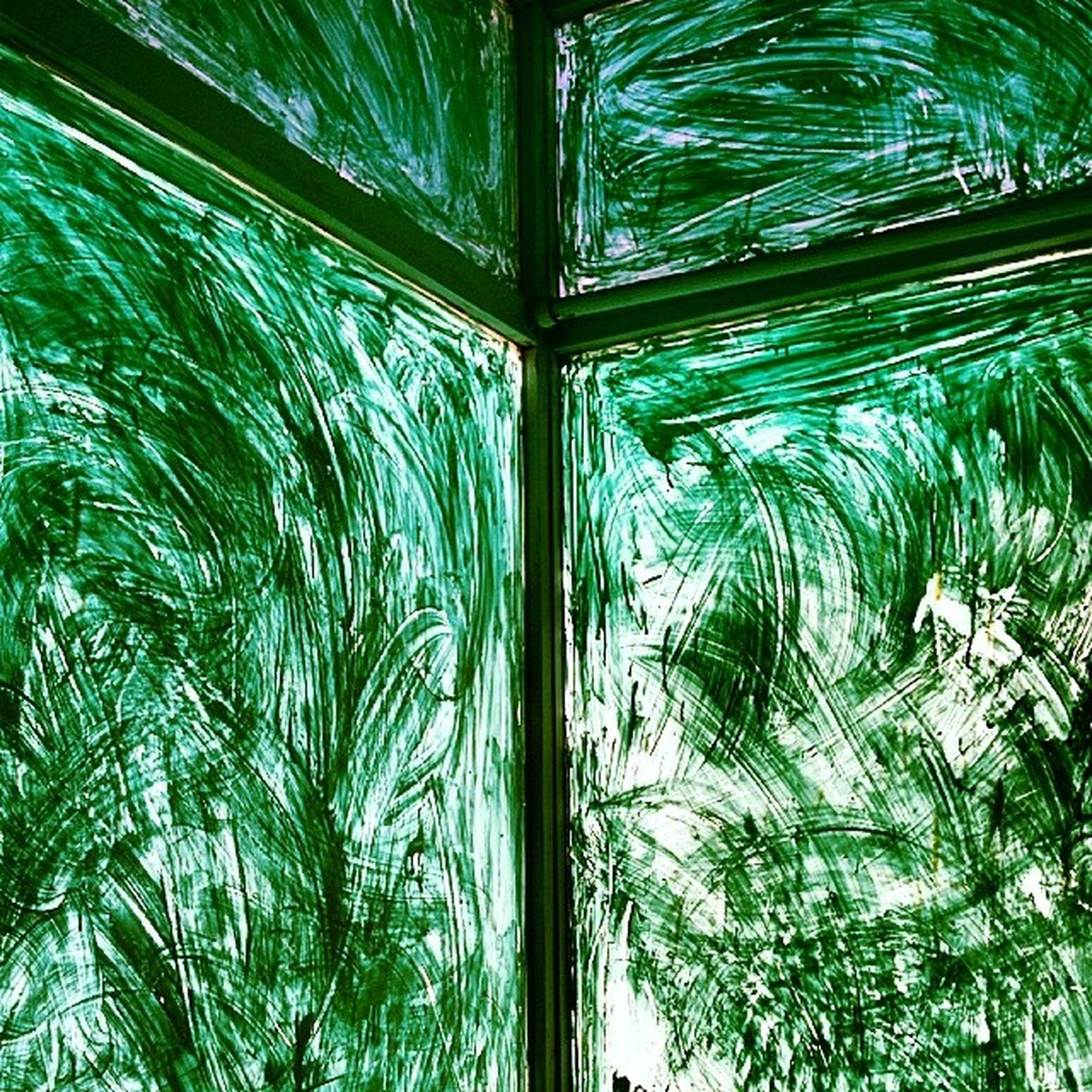 tree, full frame, backgrounds, green color, growth, palm tree, low angle view, nature, day, glass - material, leaf, pattern, reflection, no people, transparent, green, outdoors, close-up, plant, tranquility