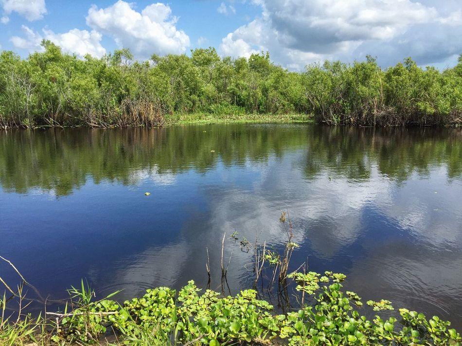 Canal into Lake Washington Lake Washington Melbourne Florida Canal Canals And Waterways Florida Waterway Florida Nature
