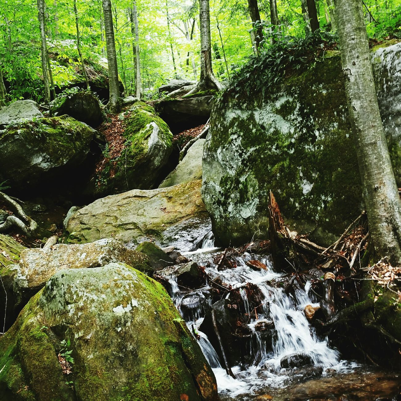 Harpersferry Hanging Out Hiking❤ Relaxing Green Waterfall Love Hello World