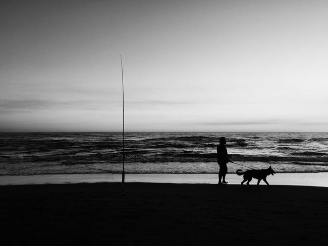Monochrome Photography late summer, by Claudia Ioan Beach Horizon Over Water Sea Water Silhouette Shore Vacations People Leisure Activity Outdoors Blackandwhite Seascape Mobile Photography IPhoneography Iphone6 Dog Beauty In Nature
