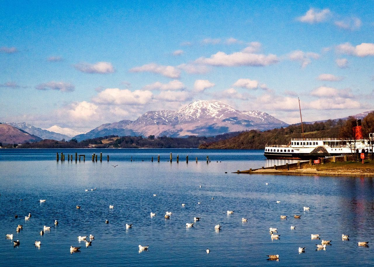 Mountain Mountain Range Scenics Nature Beauty In Nature Water Lake Snow Sky Cloud - Sky Winter Snowcapped Mountain Cold Temperature Tranquil Scene Tranquility Outdoors Large Group Of Animals Bird Day No People LochLomond Paddle Steamer Scotland EyeEmNewHere